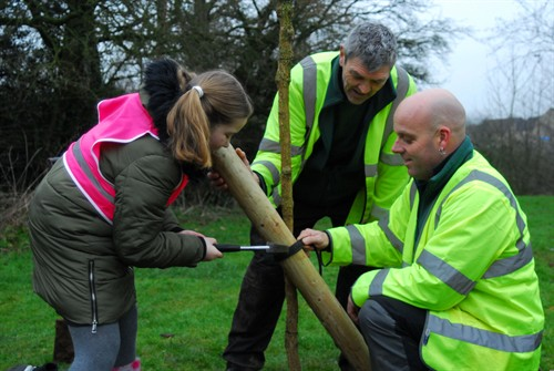 Cale Park Tree Planting 2